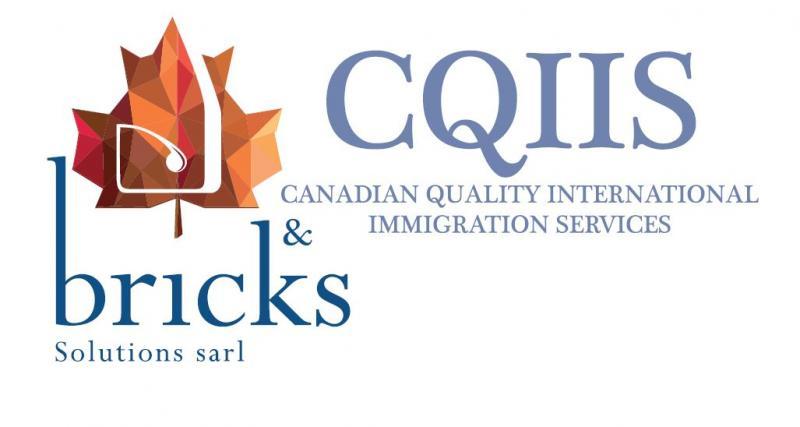 CQIIS -BRICKS